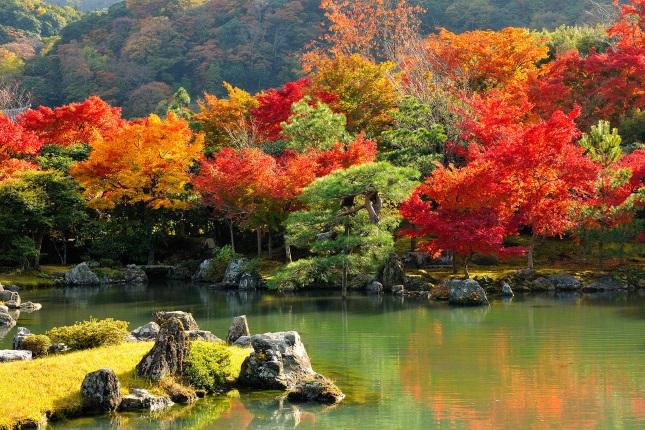 Самые красивые места в мире, будто созданные для осени, 25 фото